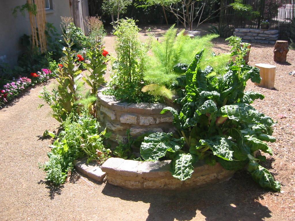 сад пряностей своими руками