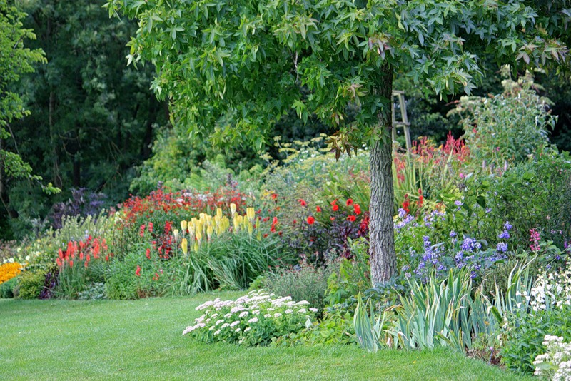 сады Котон Манорс Coton Manor Англия цветник