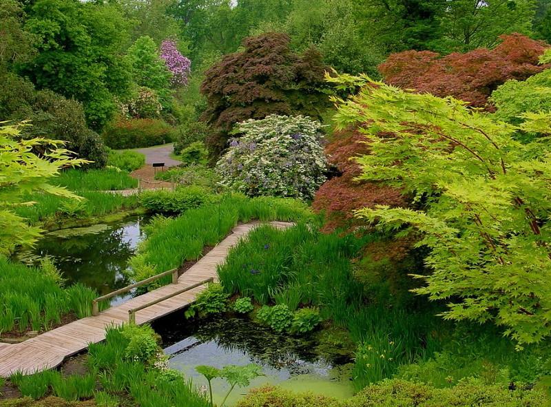 замок Wakehurst красивый сад пруд садовый мостик