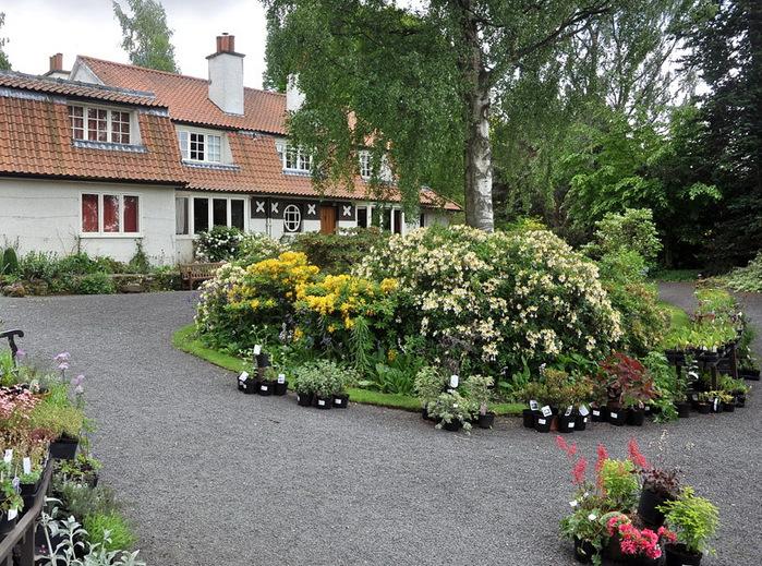 сад Бранклин Англия английский сад