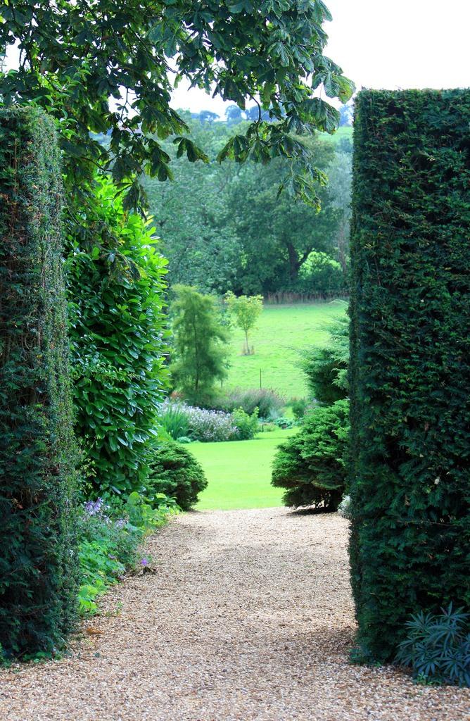 сады Котон Манорс Coton Manor Англия красивый сад топиари