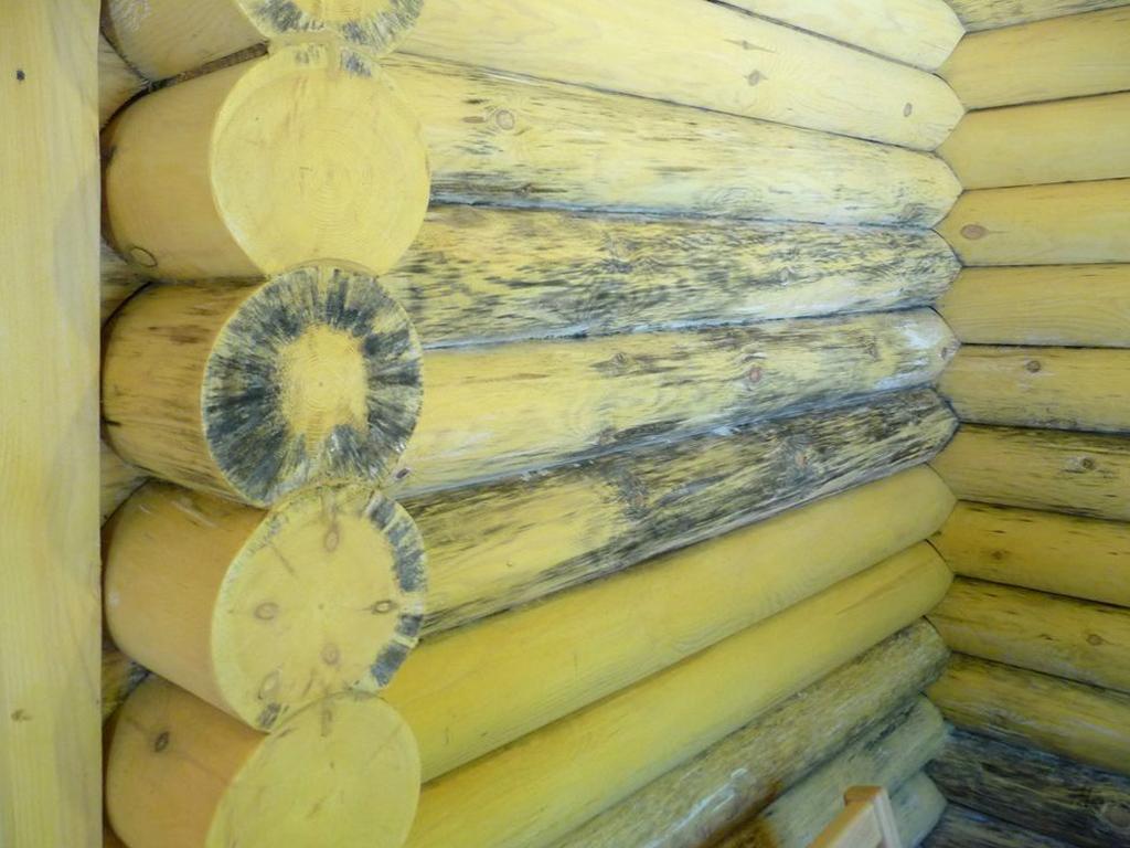 защита для деревянных покрытий от плесени грибка дерево синеет
