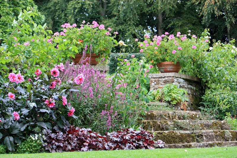 сады Котон Манорс цветник