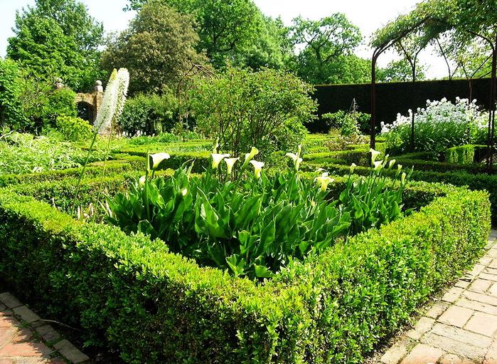 Сады SISSINGHURST Сиссингхерст красивый сад Англия  зеленая изгородь