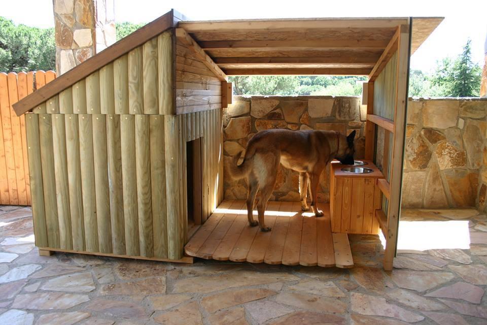 будка для собаки своими руками навес