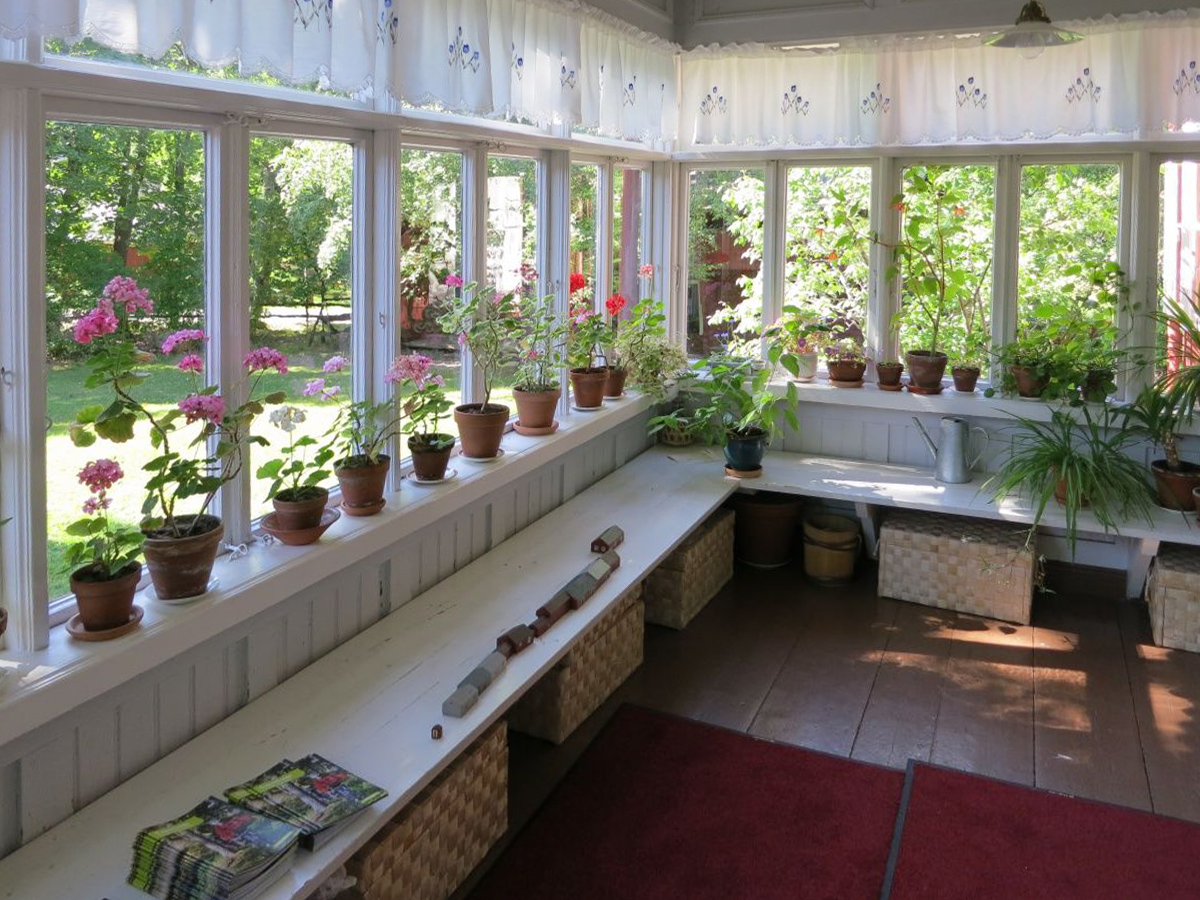 сад горшечные растения на веранде идеи для веранды