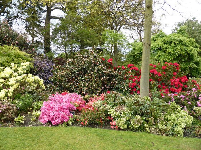 красивый сад сады Уизли Англия миксбордер
