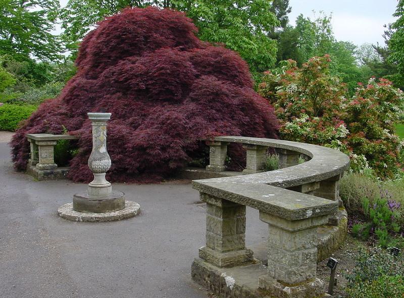 замок Wakehurst красивый сад