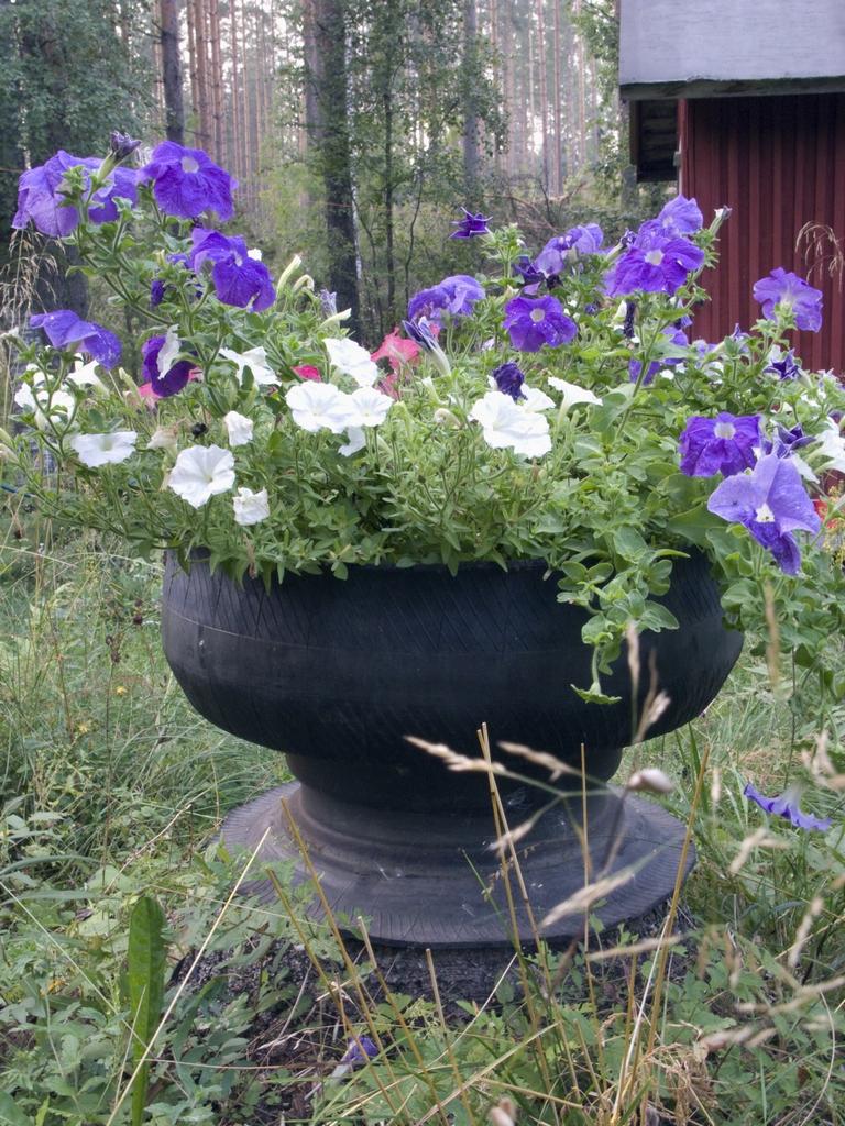 декор сада при помощи вазонов