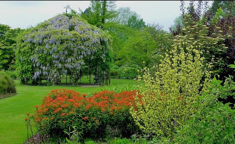 замок Wakehurst красивый сад микс декоративные деревья