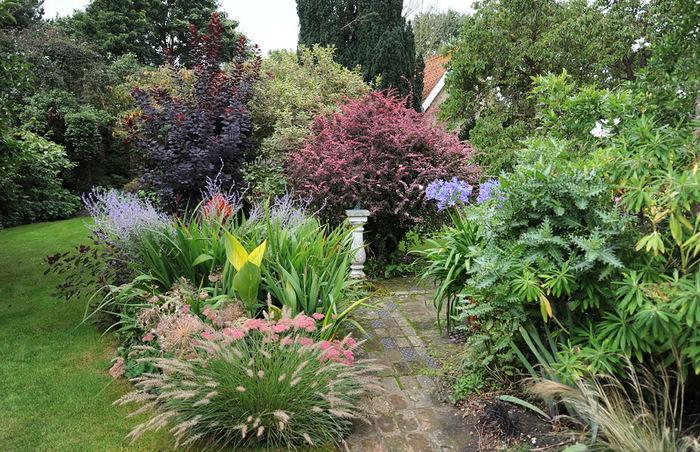 Магнолия Хаус красивый сад Англия цветник миксбордер