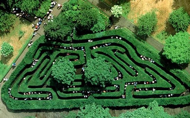 садовый лабиринт Хемптон Корт