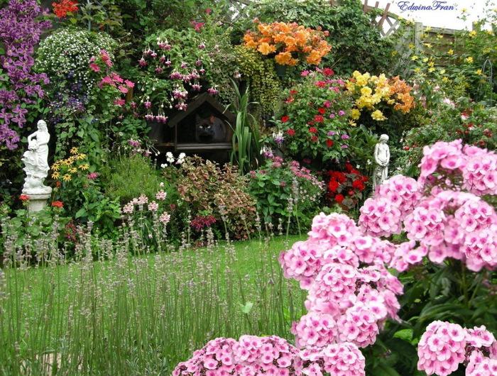 красивый сад Эдвины Фран