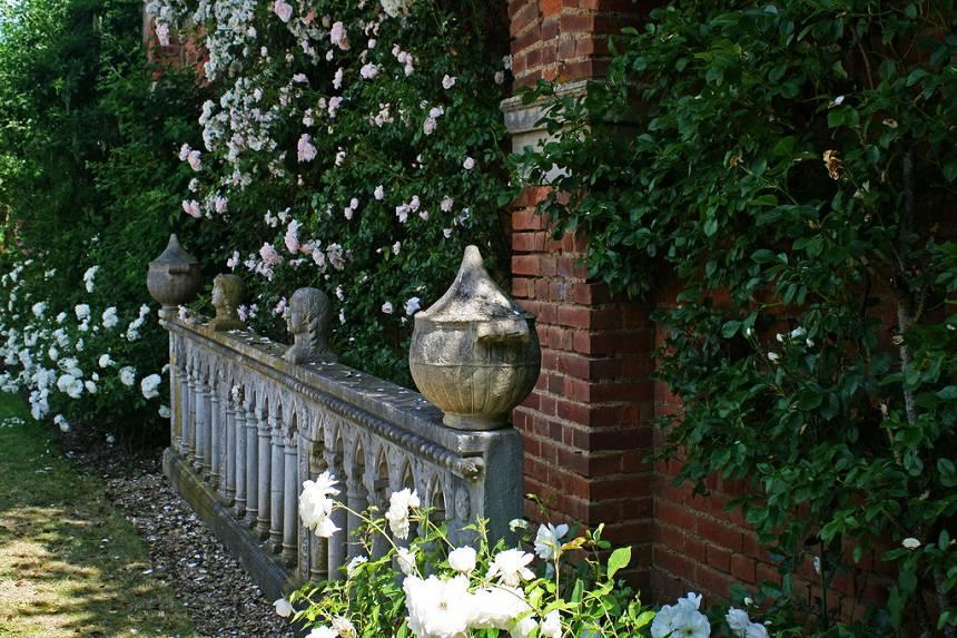Замок Хивер сад роз красивый сад Англия клумба вертикальное озеленение плетистые розы вазон