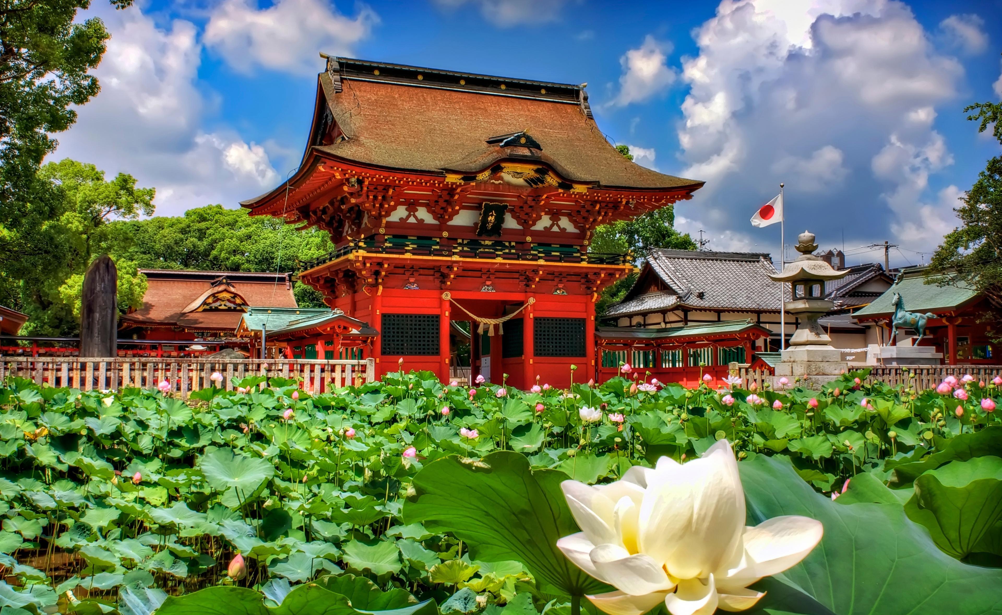 японский сад символизм японских садов цветок лотоса