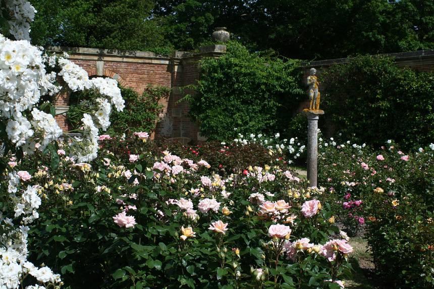 Замок Хивер сад роз красивый сад Англия  вертикальное озеленение вазон скульптура