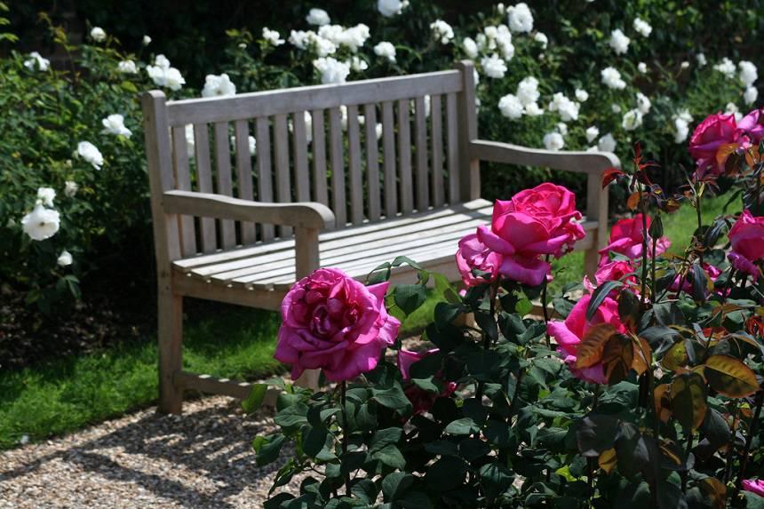 Замок Хивер сад роз красивый сад Англия клумба садовая скамейка