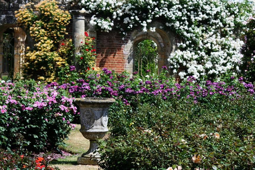 Замок Хивер сад роз красивый сад Англия  клумба вазон колонна