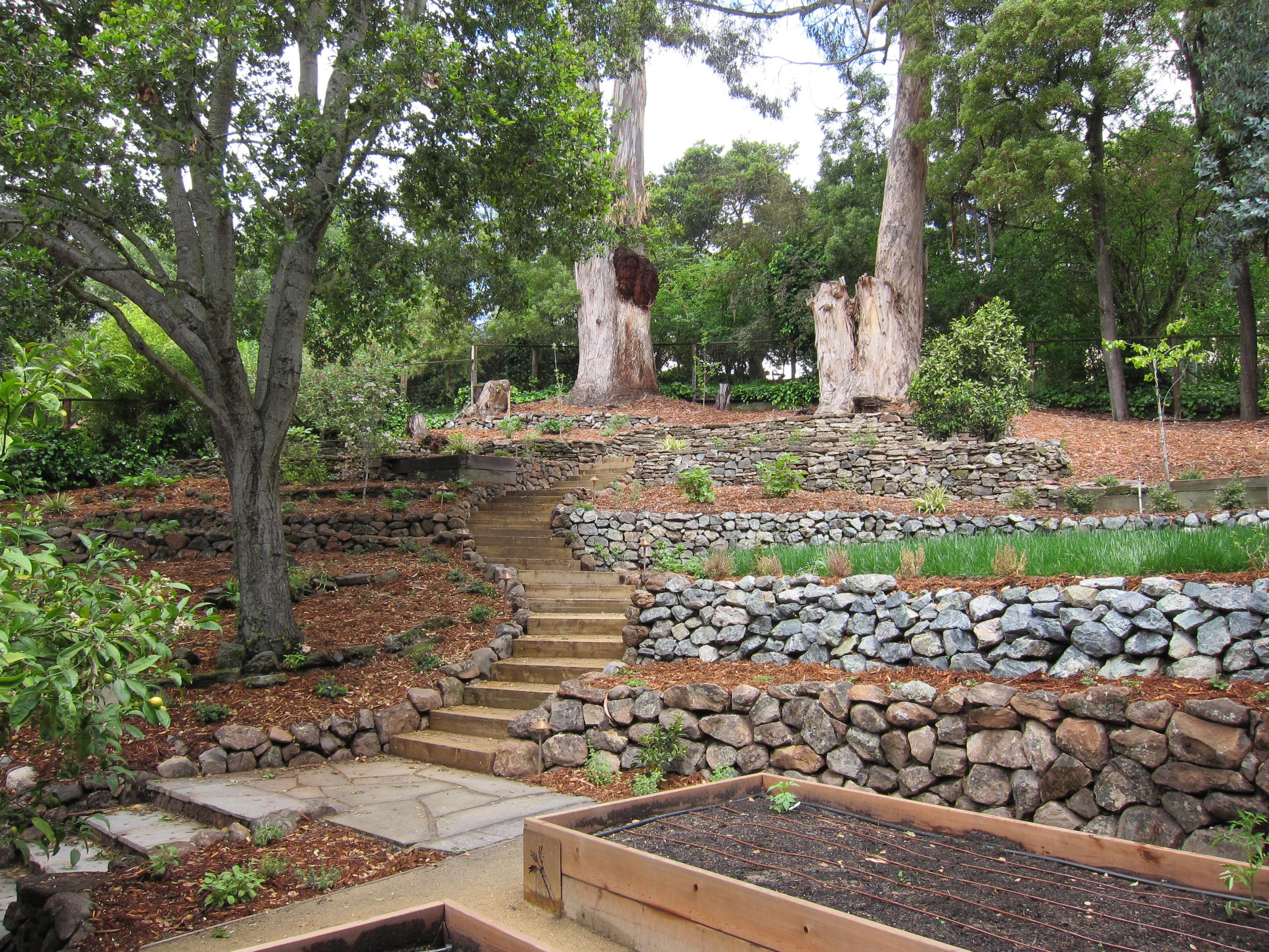 сад на склоне террасы террасирование
