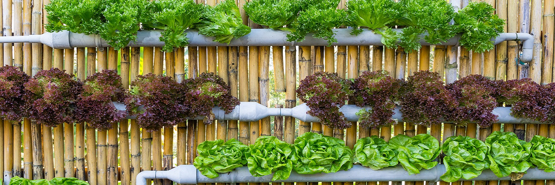 контейнерный вертикальный сад своими руками из труб