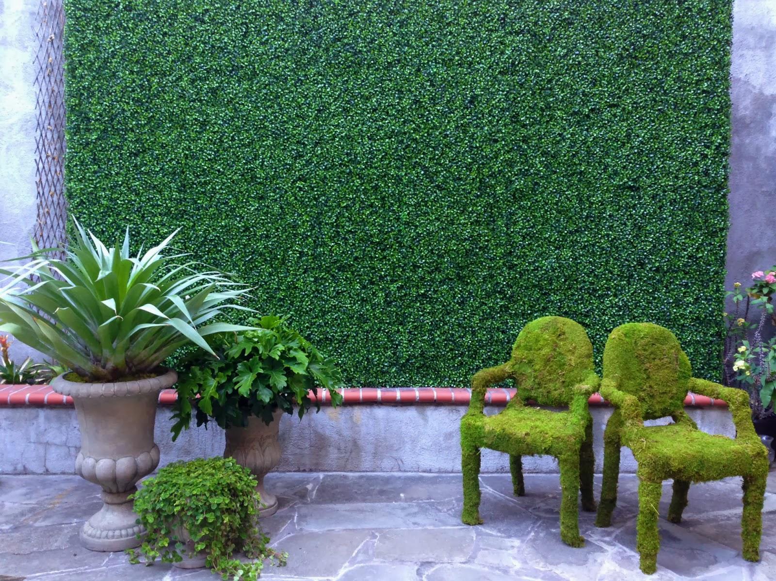 как посадить мох на участке на любой поверхности