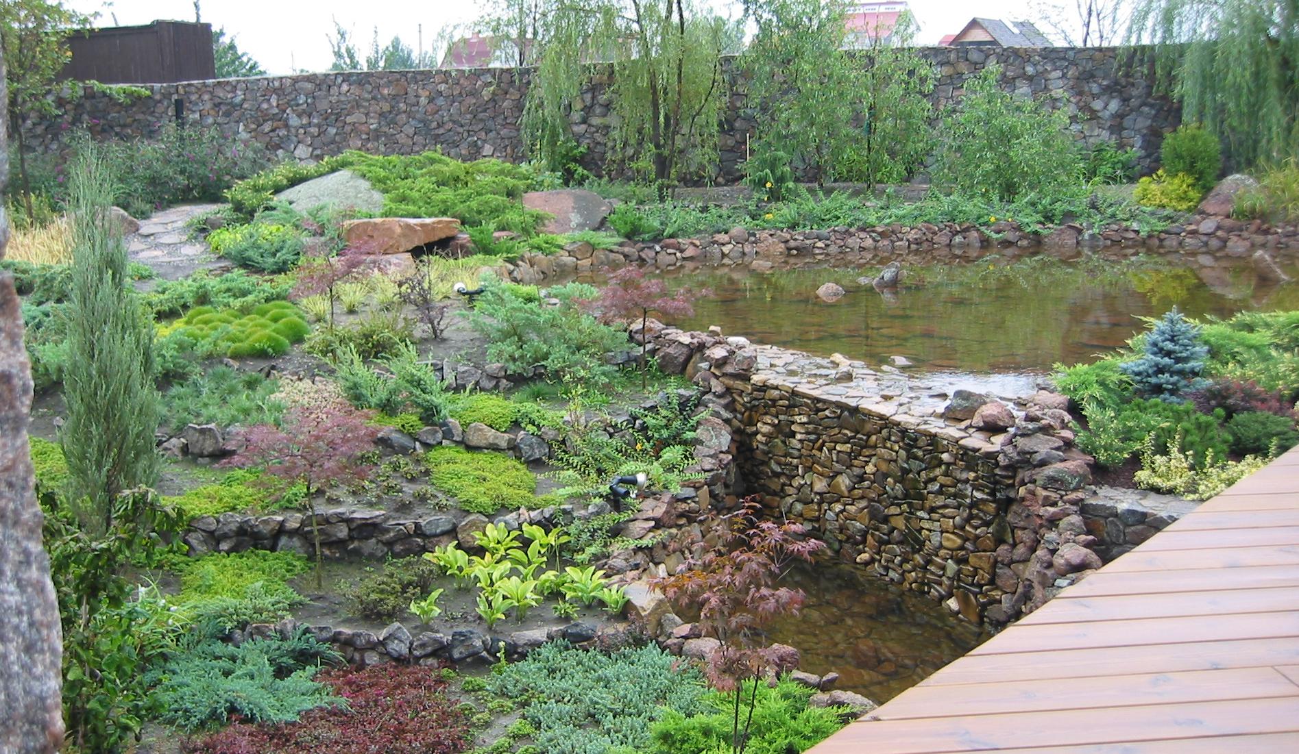 сад на склоне дикий сад