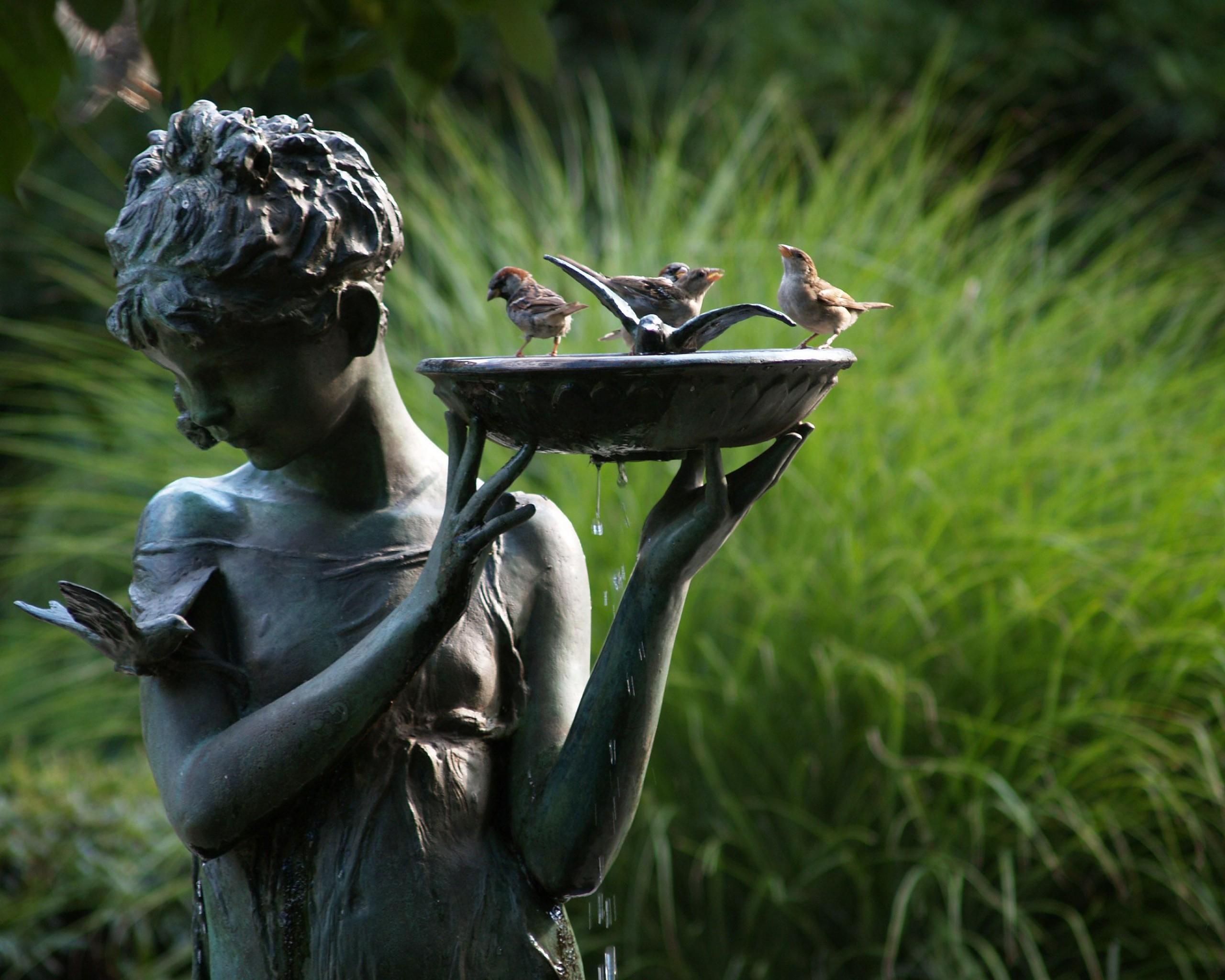 декор сада купальня для птиц