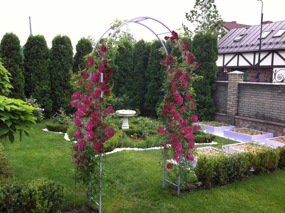 вертикальное озеленение беседка арка