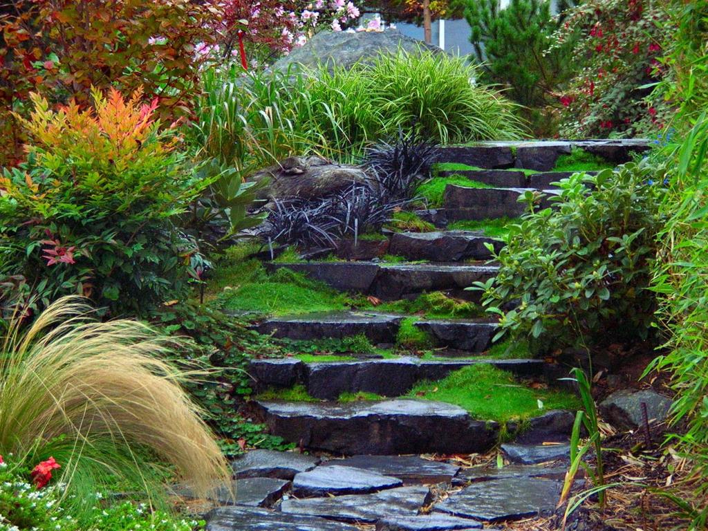 лестницы на садовом участке