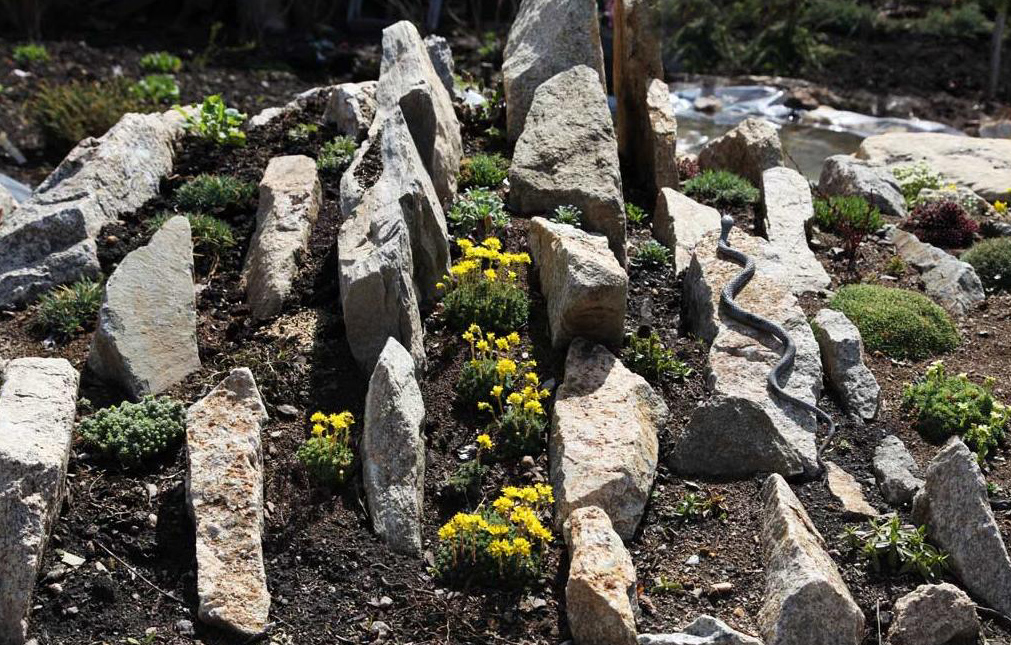 чешские скалки альпийские горки своими руками