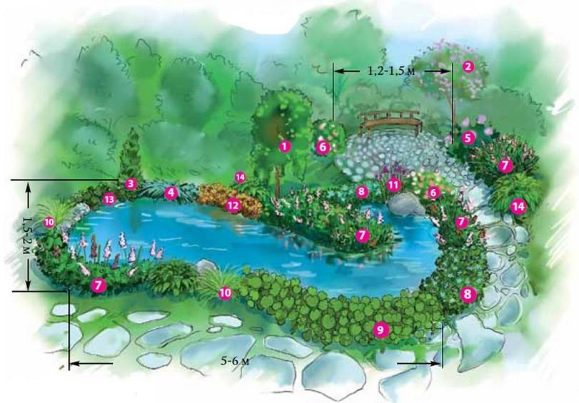 как украсить водоем растениями своими руками