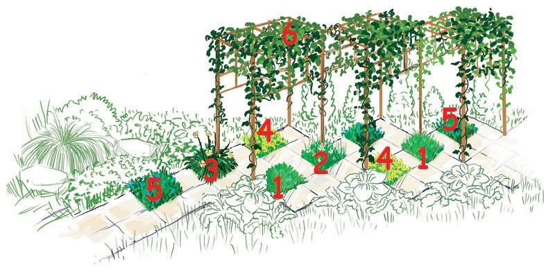 проект садовой дорожки с цветником своими руками