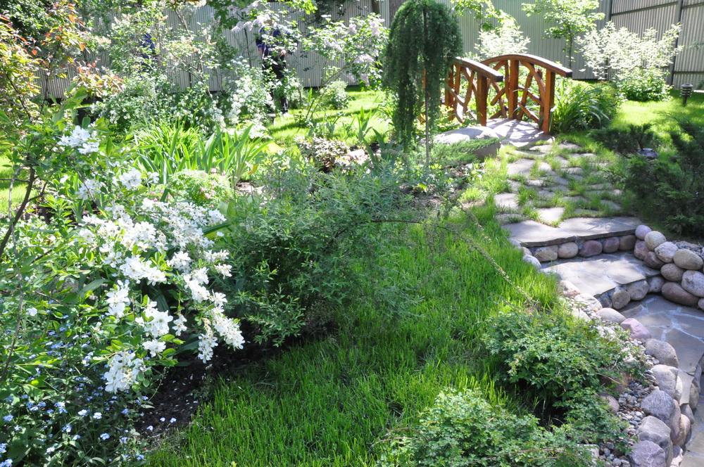 лестница в саду