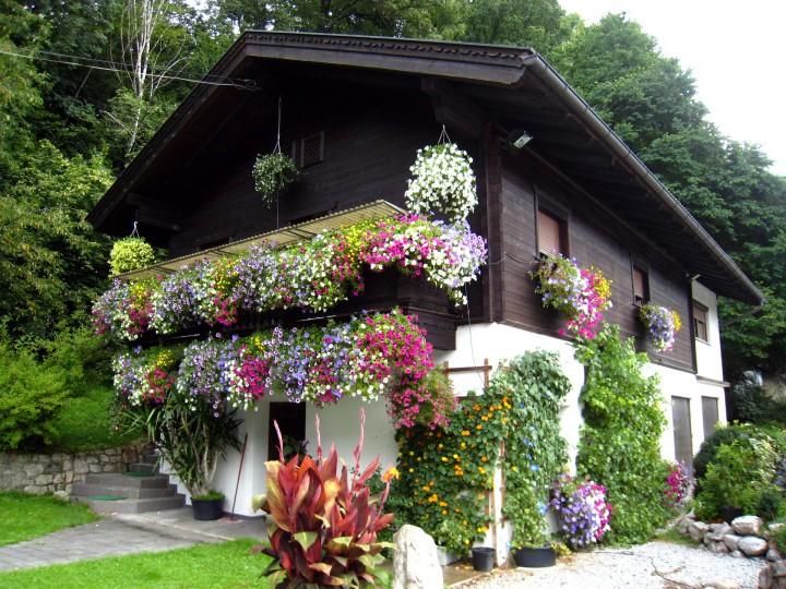 украшение фасада цветник