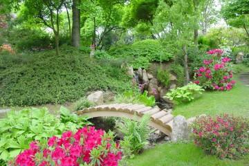 сады умеренного климата выбор растений