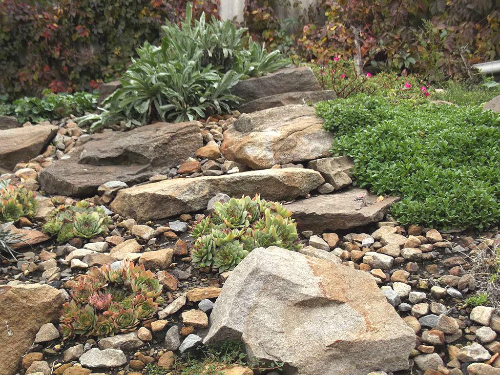 Как выбрать камни для альпийской горки или рокария