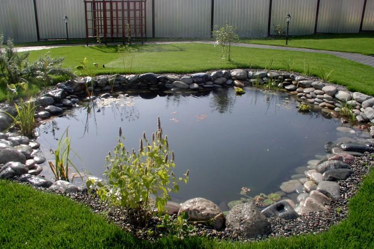 как обустроить водоем в саду
