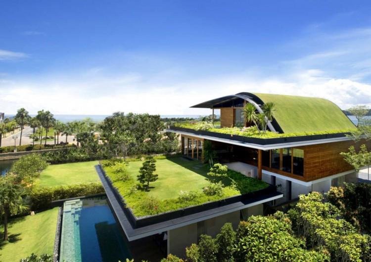 Сад на крыше своими руками