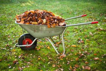 осенние работы в саду садовая тележка со старыми листьями